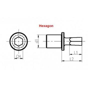 NG12E10STIC | POLIANGOLAR NG12 ZESKANT TOOL 10mm - GESINTERD + TICN PLUS Coating